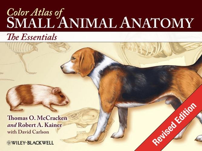 Color Atlas Of Small Animal Anatomy Thomas O Mccracken Robert A