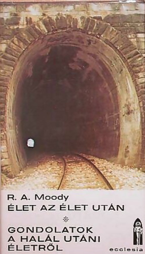 reflections on life after life raymond moody pdf