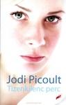 Jodi Picoult: Tizenkilenc perc