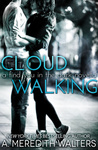 A. Meredith Walters: Cloud Walking