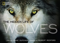 Jim Dutcher – Jamie Dutcher: The Hidden Life of Wolves