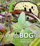 Covers_293260