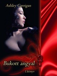 Ashley Carrigan: Bukott angyal