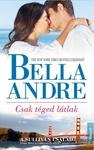 Bella Andre: Csak téged látlak