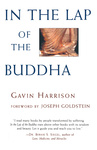 Gavin Harrison: In the Lap of the Buddha