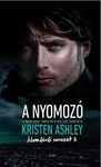 Kristen Ashley: A nyomozó