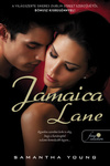 Samantha Young: Jamaica Lane