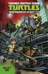 Kenny Byerly – David Tipton – Scott Tipton – Erik Burnham: Teenage Mutant Ninja Turtles: New Animated Adventures 1.
