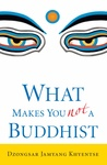 Dzongsar Jamyang Khyentse: What Makes You Not a Buddhist